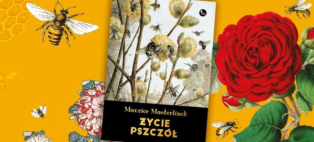 SLIDER_Zycie pszczol